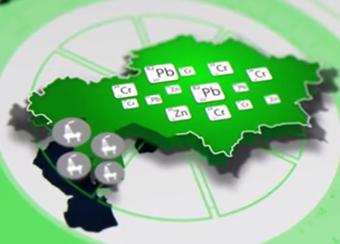 Отзывы Сбербанк Россия - карта